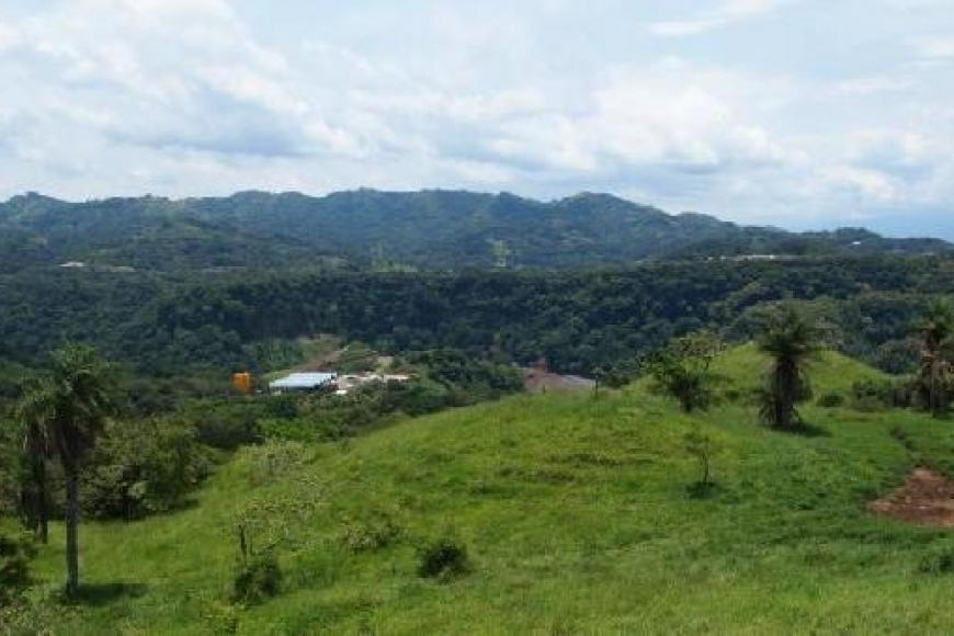 Ricovida view